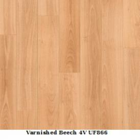 Varnished Beech