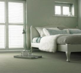 NAVAN VELVET 34 Call for Best Price