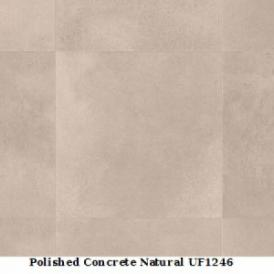 Polished Concrete Natural